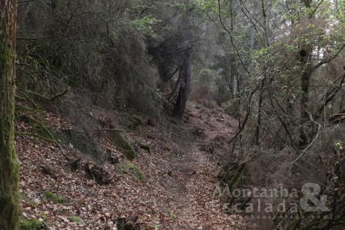 Trilho Aguia do Sarilhão